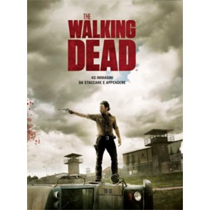 THE WALKING DEAD POSTER COLLECTION PANINI COMICS 40 IMMAGINI DA STACCARE 31 X 41 CM