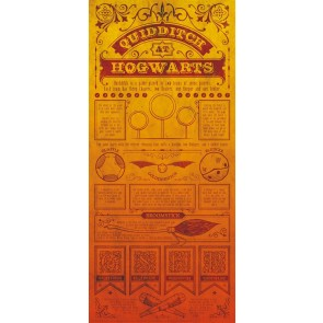 THG-HP27 - HARRY POTTER - WALL ART - QUIDDITCH RULES