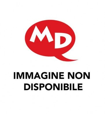 I DRUIDI 4 - IL SEGRETO D'ORIENTE
